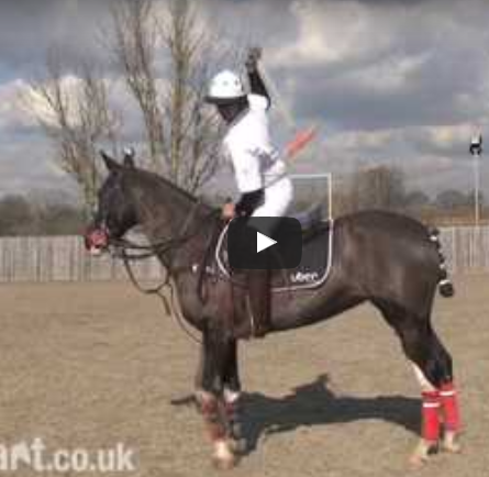 How to play Polo - How to hit a near side back hand shot.mp4